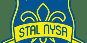 stal_nysa siatkówka logo